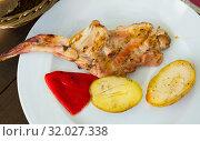 Купить «Grilled rabbit piece with vegetable garnish», фото № 32027338, снято 21 сентября 2019 г. (c) Яков Филимонов / Фотобанк Лори