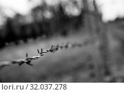 Купить «Barbed wire fence closeup view, Auschwitz II», фото № 32037278, снято 7 мая 2019 г. (c) Tryapitsyn Sergiy / Фотобанк Лори