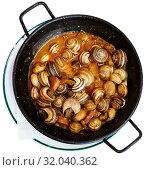 Grape snails in sauce. Spanish dish. Стоковое фото, фотограф Яков Филимонов / Фотобанк Лори