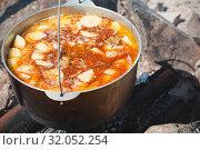 Купить «Spicy soup in a cauldron», фото № 32052254, снято 14 июля 2019 г. (c) EugeneSergeev / Фотобанк Лори