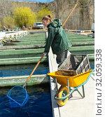 Купить «Female worker catching trout with hoop net», фото № 32059338, снято 19 марта 2019 г. (c) Яков Филимонов / Фотобанк Лори