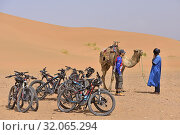 Mountain bikes and man offering camel ride at the foot of the sand dunes at Tinfou, near Tamegroute, Draa River valley, Province of Zagora, Region Draa-Tafilalet, Morocco, North West Africa. (2019 год). Редакционное фото, фотограф Christian Goupi / age Fotostock / Фотобанк Лори