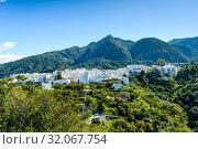 Istán, Málaga, Andalusia, Spain, Europe. Стоковое фото, фотограф José Luis Hidalgo Salguero / easy Fotostock / Фотобанк Лори