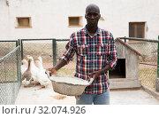 Купить «Male farmer with bird feed standing near enclosure gooses», фото № 32074926, снято 6 августа 2019 г. (c) Яков Филимонов / Фотобанк Лори