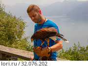 11.06.2019 Varenna, Italy, Europe: Trainer holds his eagle on a hand with leather glove of falconry on a background of defocused lake Como and alps mountains. At a Falcon Centre in Castello di Vezio. Редакционное фото, фотограф Алексей Ширманов / Фотобанк Лори