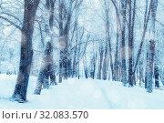 Купить «Зимний пейзаж. Зимний парк и заснеженные деревья. Winter landscape, snowy winter trees along the park alley - winter snowy scene with trees under snowfall in winter day», фото № 32083570, снято 11 декабря 2017 г. (c) Зезелина Марина / Фотобанк Лори