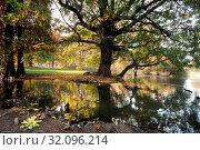 Italia, Lombardia, Milano, Parco Sempione gardens. Стоковое фото, фотограф La Monaca Davide / AGF / age Fotostock / Фотобанк Лори