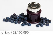Купить «Blueberry jam and fresh berries», фото № 32100090, снято 15 октября 2019 г. (c) Яков Филимонов / Фотобанк Лори