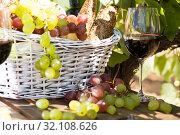 Купить «still life with glass of red wine grapes and picnic basket on table», фото № 32108626, снято 11 сентября 2017 г. (c) Татьяна Яцевич / Фотобанк Лори