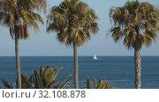 Купить «A sea view with a white sail», видеоролик № 32108878, снято 17 февраля 2020 г. (c) Данил Руденко / Фотобанк Лори