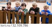 Купить «Children with phones near wooden fence», фото № 32109786, снято 25 ноября 2018 г. (c) Яков Филимонов / Фотобанк Лори