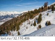 Купить «Winter mountain landscape. Coniferous forest on a snowy slope, Swiss Alps», фото № 32110406, снято 4 февраля 2010 г. (c) Юлия Бабкина / Фотобанк Лори