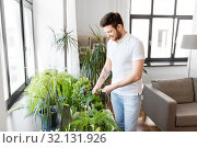 man taking care of houseplants at home. Стоковое фото, фотограф Syda Productions / Фотобанк Лори
