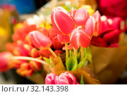 Купить «Pile of red tulips on display for sale in a supermarket», фото № 32143398, снято 20 ноября 2019 г. (c) easy Fotostock / Фотобанк Лори