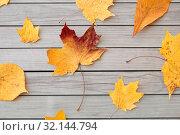 Купить «dry fallen autumn leaves on gray wooden boards», фото № 32144794, снято 25 октября 2018 г. (c) Syda Productions / Фотобанк Лори
