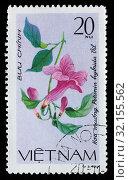 Petunia hybrida, creeping flower, postage stamp, Vietnam, 1980. (2010 год). Редакционное фото, фотограф Ivan Vdovin / age Fotostock / Фотобанк Лори