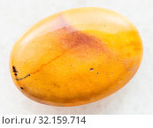 Macro shooting of natural mineral rock specimen - bead from yellow Mookaite (Mookaite Jasper) gemstone from Australia on white marble background. Стоковое фото, фотограф Zoonar.com/Valery Voennyy / easy Fotostock / Фотобанк Лори