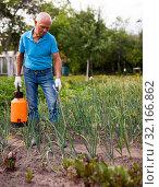 Купить «Farmer sprays harvest of vegetables with insecticides», фото № 32166862, снято 31 марта 2020 г. (c) Яков Филимонов / Фотобанк Лори