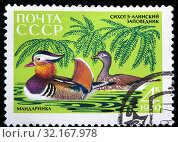 Mandarin Duck, Aix galericulata, Fauna of Sikhote-Alin Nature Reserve, postage stamp, Russia, USSR, 1970. (2011 год). Редакционное фото, фотограф Ivan Vdovin / age Fotostock / Фотобанк Лори