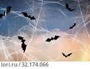 Купить «black bats over starry night sky and spiderweb», фото № 32174066, снято 6 июля 2017 г. (c) Syda Productions / Фотобанк Лори