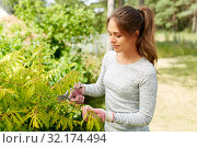 Купить «woman with pruner cutting bushes at summer garden», фото № 32174494, снято 12 июля 2019 г. (c) Syda Productions / Фотобанк Лори