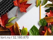 Купить «Autumn flat lay with copy space», фото № 32180870, снято 13 августа 2019 г. (c) Wavebreak Media / Фотобанк Лори