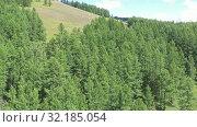 Купить «Aerial video view from drone on Altai natural landscape of Ulagan Plateau. Altai, Siberia, Russia», видеоролик № 32185054, снято 24 августа 2019 г. (c) Serg Zastavkin / Фотобанк Лори
