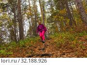 Купить «Woman traveler descends from a hill in the autumn forest», фото № 32188926, снято 15 сентября 2019 г. (c) Евгений Харитонов / Фотобанк Лори
