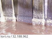 Красивые кристаллы соли на досках в розовом озере Сасык-Сиваш недалеко от курортного города Евпатория в Крыму. Крупный план.  Солнечный день (2019 год). Стоковое фото, фотограф Наталья Гармашева / Фотобанк Лори