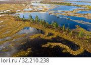 Вид сверху на болота и тундра севере Западной Сибири, Ямало-Ненецкий автономный округ. Стоковое фото, фотограф Григорий Писоцкий / Фотобанк Лори