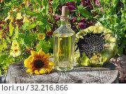 Бутылка с подсолнечным маслом и подсолнухи на старом пне в саду. Стоковое фото, фотограф Елена Коромыслова / Фотобанк Лори