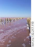 Красивое розовое озеро Сасык Сиваш в западной части Крымского полуострова недалеко от Евпатории в солнечный день. Остатки деревянной соляной плотины (2019 год). Стоковое фото, фотограф Наталья Гармашева / Фотобанк Лори