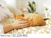 Купить «close up of owner with red cat in bed at home», фото № 32224962, снято 15 ноября 2017 г. (c) Syda Productions / Фотобанк Лори