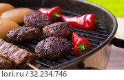 Купить «barbecue kebab meat and vegetables on grill», видеоролик № 32234746, снято 20 сентября 2019 г. (c) Syda Productions / Фотобанк Лори