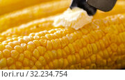 corn with melting butter roasting on grill. Стоковое видео, видеограф Syda Productions / Фотобанк Лори