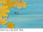 Купить «Два обручальных кольца лежат рядом с желтыми кленовыми листьями на синем деревянном столе. Свадьба осенью. Открытка», фото № 32237762, снято 21 сентября 2019 г. (c) Наталья Гармашева / Фотобанк Лори