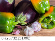 Harvest. Vegetarian food, raw food diet, assortment of diet products, various fresh raw vegetables, eggplant, green pepper garlic. Стоковое фото, фотограф Светлана Евграфова / Фотобанк Лори