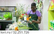 Купить «Smiling African American man professional florist offering fresh gerberas at his flower shop», видеоролик № 32251726, снято 26 марта 2019 г. (c) Яков Филимонов / Фотобанк Лори