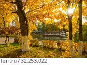 Купить «Городской парк», фото № 32253022, снято 3 октября 2019 г. (c) Кристина Викулова / Фотобанк Лори