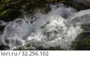 Купить «Бурный горный ручеек с чистой питьевой водой течет в горах», видеоролик № 32256102, снято 15 сентября 2019 г. (c) А. А. Пирагис / Фотобанк Лори