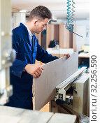 Купить «Positive guy fixing chipboard on table at workshop», фото № 32256590, снято 7 ноября 2016 г. (c) Яков Филимонов / Фотобанк Лори