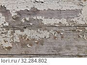 Old wood surface. Стоковое фото, фотограф Константин Колосов / Фотобанк Лори