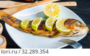 Купить «The fried fish served on the plate», фото № 32289354, снято 28 ноября 2017 г. (c) Elnur / Фотобанк Лори