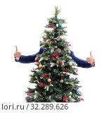 Купить «Businessman decorating christmas tree isolated on white», фото № 32289626, снято 21 сентября 2017 г. (c) Elnur / Фотобанк Лори