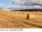 Купить «Autumn rural landscape, bales of straw on a harvested field», фото № 32291634, снято 23 сентября 2019 г. (c) Юлия Бабкина / Фотобанк Лори