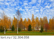 Купить «Golden bright autumn in famous Mitino Landscape Park. Moscow, Russia», фото № 32304058, снято 16 октября 2019 г. (c) Валерия Попова / Фотобанк Лори