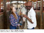 Купить «Workers of horse stable with roan horse», фото № 32305626, снято 2 октября 2018 г. (c) Яков Филимонов / Фотобанк Лори