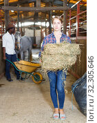 Купить «Couple of farmers working at stable», фото № 32305646, снято 2 октября 2018 г. (c) Яков Филимонов / Фотобанк Лори