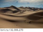 Sand dunes in Gobi Desert at sunset. Стоковое фото, фотограф Михаил Коханчиков / Фотобанк Лори