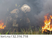 Купить «Firefighters of Fire Department of Federal Fire Service in Kamchatka Territory during fire extinguishing, training to overcome fire zone of psychological training for firefighters», фото № 32316718, снято 7 августа 2019 г. (c) А. А. Пирагис / Фотобанк Лори